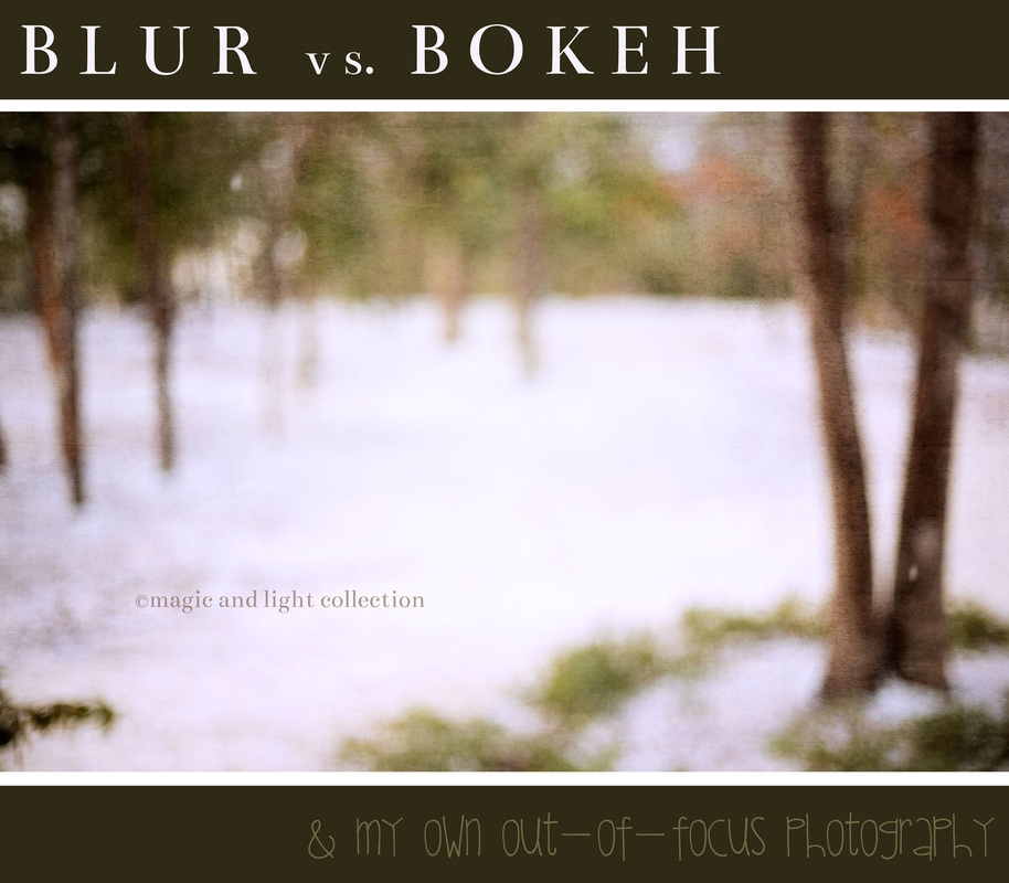 Learn the difference between blur and bokeh in photography