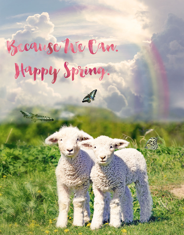 Cloud overlays, rainbow overlays, lambs, spring, butterfly overlays, butterflies
